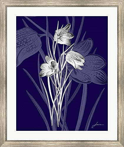 Jewel Stems IV by James Burghardt Framed Art Print Wall Picture, Silver Scoop Frame, 32 x 38 ()