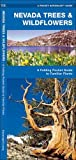 Nevada Trees & Wildflowers: A Folding Pocket Guide to Familiar Species (A Pocket Naturalist Guide)