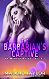 The Barbarian's Captive