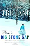 Home to Big Stone Gap, Adriana Trigiani, 0812967828