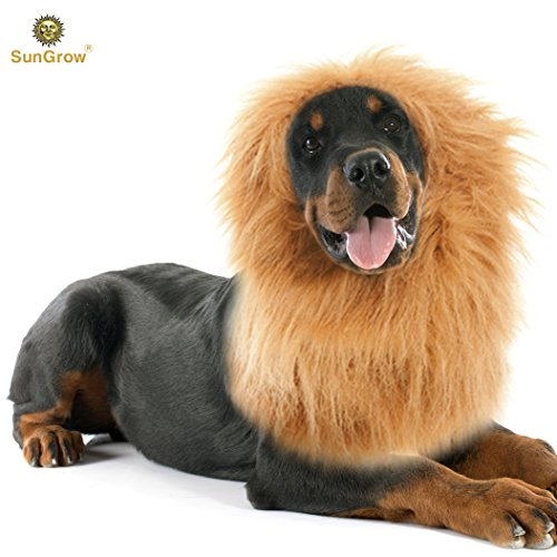 sungrow lion mane costume with ears for big dogs