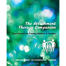 Learn more about the book, The Attachment Therapy Companion: Key Practices for Treating Children & Families