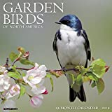 Garden Birds of North America 2018 Calendar