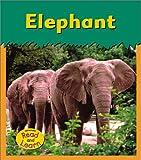 Elephant, Patricia Whitehouse, 140340643X