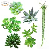 Luyue Artificial Succulent Plants 6 Pcs Mixed Unpotted Fake Green Stems for DIY Home Garden Wall Decor Flower Arrangement