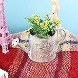 Retro Iron Flower Pot Planter Bucket Potted Plant Holder Flower Vase