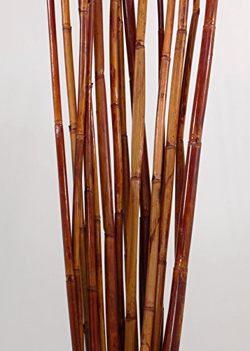 Green Floral Crafts Natural River Cane 6 Ft, 3-Tone Mahogany, Pack of 20 (Garden 6ft Canes)