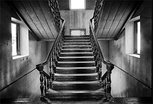 LFEEY 9x6ft Gloomy Haunted House Background Grunge Stair Old Wooden Stairway Photography Backdrop Horror Interior Scary Staircase Halloween Ghost Vampire Evil Monster Photo Studio Props Vinyl -