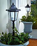 The Lakeside Collection Set of 2 Solar Lanterns