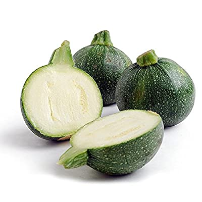 Eight Ball Squash 15 Seeds - GARDEN FRESH PACK!