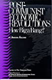 Post-Communist Economic Revolutions : How Big a Bang?, Aslund, Anders, 0892062037