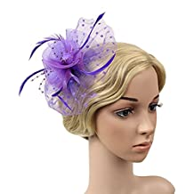 Urban CoCo Women's Feather Beads Net and Veil Fascinator Hair Clip Hat