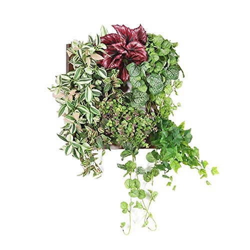 arne 光触媒 壁掛け 観葉植物 人工観葉植物 フェイクグリーン インテリア 壁掛 インテリアグリーン フェイク ウォールグリーン フレーム Botanical a.class 01 ブラウン B01LX9GUV8 No.01|ブラウン ブラウン No.01