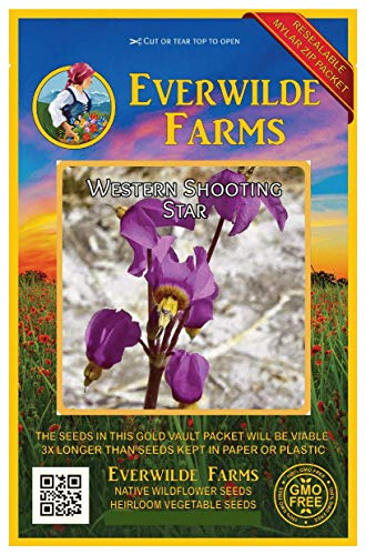 (Everwilde Farms - 300 Western Shooting Star Native Wildflower Seeds - Gold Vault Jumbo Seed Packet)