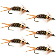 Double Bead Prince Nymph Fly Fishing Flies - Trout and Bass Wet Fly Pattern - 6 Flies Hook Size 14