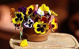 Semillas de flores Semillas Bonsai Bonsai de plantas de interior que cuelga Flores del pensamiento semillas decoración jardín libre del envío 8pcs s47