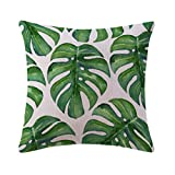 Mrsrui Throw Pillow Covers Cases Decorative Pillowcases Home Car Decorative Cotton Linen Soft and Cozy 18x18 inch (E)