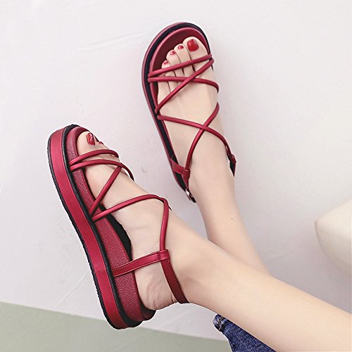 Sandals Feifei Women's Summer Fashion Waterproof Platform Cross Straps Platform Shoes Roman Shoes Bohemia Beach Shoes 3.5CM Red qHNeLMQJmY