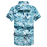 NUWFOR Men Hawaiian Print Short T-Shirt Sports Beach Quick Dry Blouse Top Blouse(Blue,L US Chest:43.7''