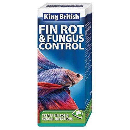 König Britische Flossenfäule & Pilzbekämpfung 100Ml (Packung mit 2)