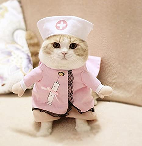 Kelaina Encantador Disfraz de Mascota Convertido en Ropa de Gato para Enfermera Tamaño 3: Amazon.es: Productos para mascotas