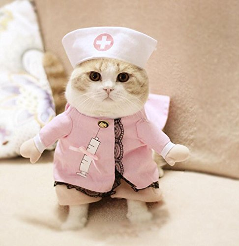 Pet Costume Turned Nurse Cat Clothes Size 2 Costume
