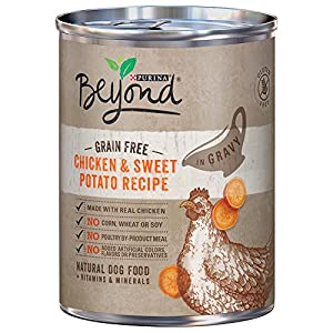 Purina Beyond Grain Free Adult Wet Dog Food