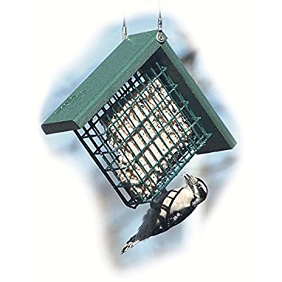 Wood Link Going Green Suet Cage