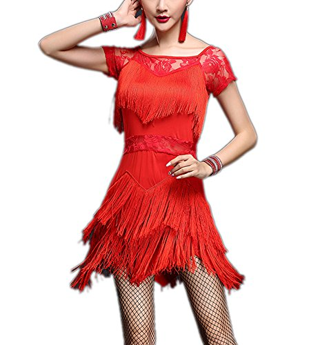 Jazz Age 1920's Flapper Gatsby Latin Salsa Tango Dance Outfit Dresses Costumes -
