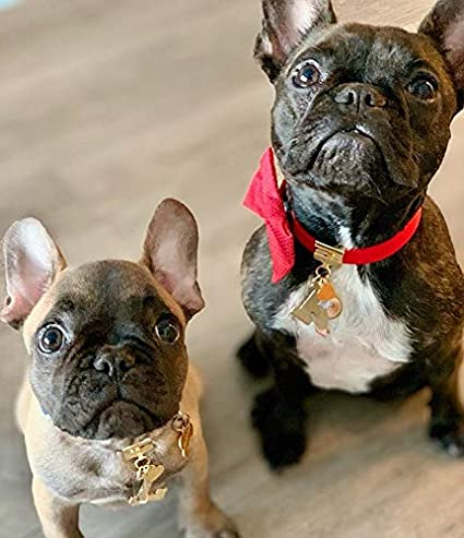 BRKLZ 24K Rosegold Plated Name Tag Dog Charm Initial Letter L