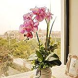 1pcs seta artificiale farfalla orchidea fiori Wedding decorazione della casa (Colore: Bianco)