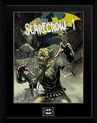 scarecrow poster dc