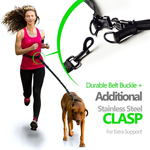Image of SparklyPets Hands-Free Dog Leash for Medium and Large Dogs – Professional Harness with Reflective Stitches for Training, Walking, Jogging and Running Your Pet (Green)