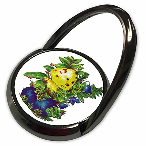 3dRose BLN Victorian Fruits and Flowers Collection - Blue Flowers with Greenery and Large Yellow Pod - Phone Ring (phr_170415_1) ()