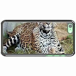 iPhone 5C Black Hardshell Case cub kitten motherhood predators cats Desin Images Protector Back Cover