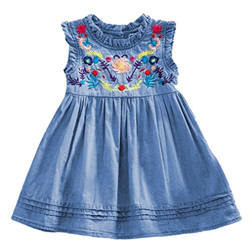 Baby Girl Embroidered Denim - Baby Girls Summer Floral Embroidered Denim Dress Girls Sleeveless Princess Dress Size 6-12Months/Tag80 (Blue)