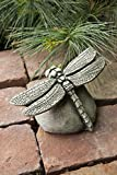 Cheap Campania International A-392-AS Dragonfly Statue, Alpine Stone