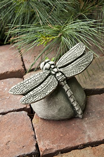 Dragonfly Fountain - Campania International A-392-AS Dragonfly Statue, Alpine Stone