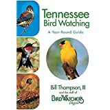 Tennessee Bird Watching - A Year-Round Guide