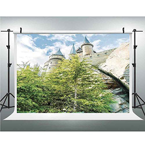 (Wizard,Photography Backdrop Silk Photography Backdrops Studio Props,10x10ft,Witchcraft School and Wizard Castle in Woods Replica in Japan Picture)