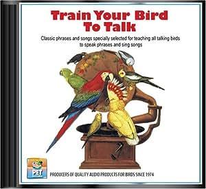 Train Your Bird To Talk