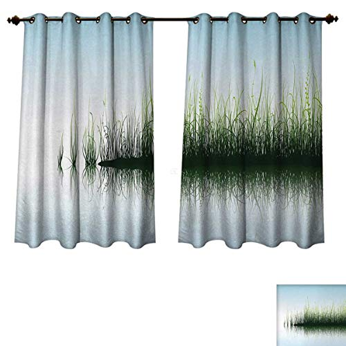 Anzhouqux Nature Blackout Thermal Curtain Panel Spring Time Sunset Beams Lake Reflection with Leaves Buds Flowers Rock Image Patterned Drape for Glass Door Blue and Green W55 x L39 inch