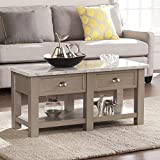 Southern Enterprises Youngston Faux Marble Rectangular Cocktail Table, Gray Finish