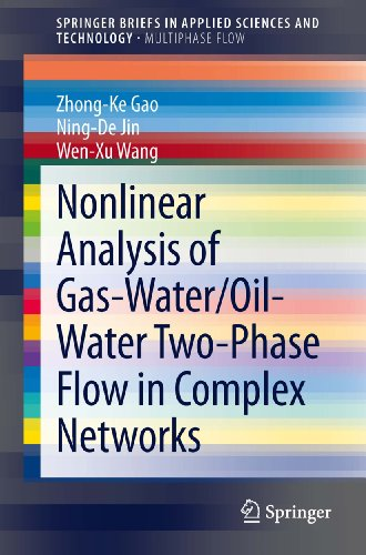 Nonlinear Analysis of Gas-Water/Oil-Water Two-Phase Flow in Complex Networks (SpringerBriefs in Applied Sciences and Technology)