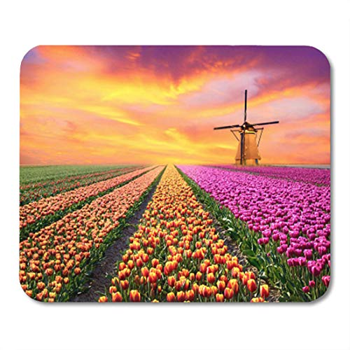 Semtomn Gaming Mouse Pad Magical Landscape Sunrise Over Tulip Field in The Netherlands 9.5