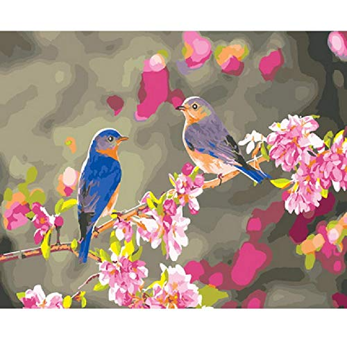 Painting by Numbers Number Picture Oil Wall Decor DIY Painting On Canvas for Home Decor Bird Talking 16X20In Frameless