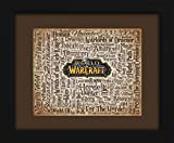 World-of-Warcraft-16x20-Art-Piece-Beautifully-matted-and-framed-behind-glass