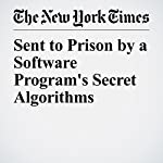 Sent to Prison by a Software Program's Secret Algorithms | Adam Liptak