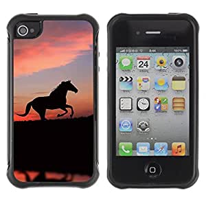 iArmor fashion Anti-Shock Defend Case / cute animals horse / Apple Iphone 5c / 5cS