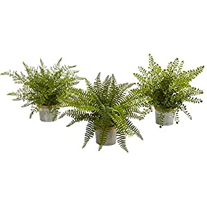 "Nearly Natural Artificial Plant 14"" Assorted Ferns with Planter, Set of 3, Green, 3 Piece 58"